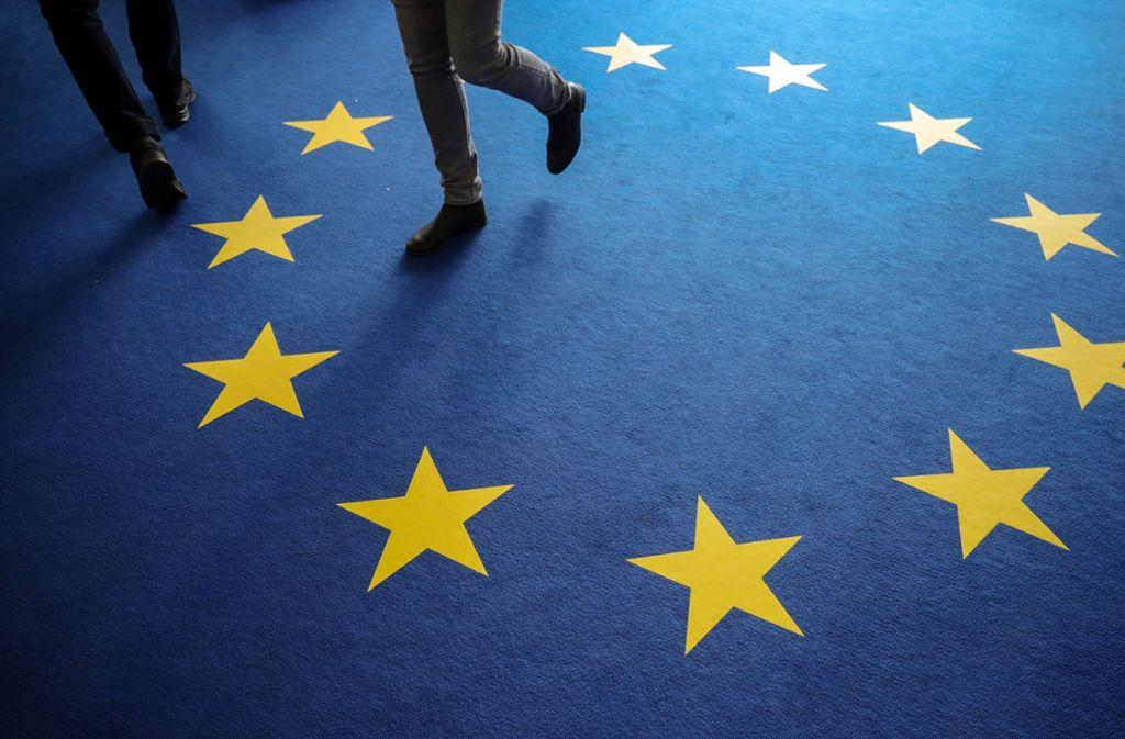 Bei der Europawahl stand für viele Wähler das Thema Umweltschutz und Klimawandel im Fokus. Foto: dpa/Michael Kappeler
