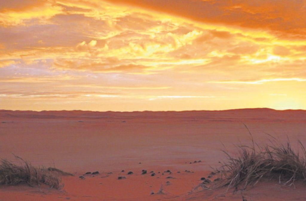Großes Drama: Sonnenuntergang über der Dünenlandschaft bei Gobabeb. Foto: Betz