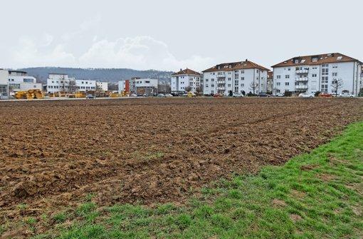 Baugebiet Bruhweg rückt näher