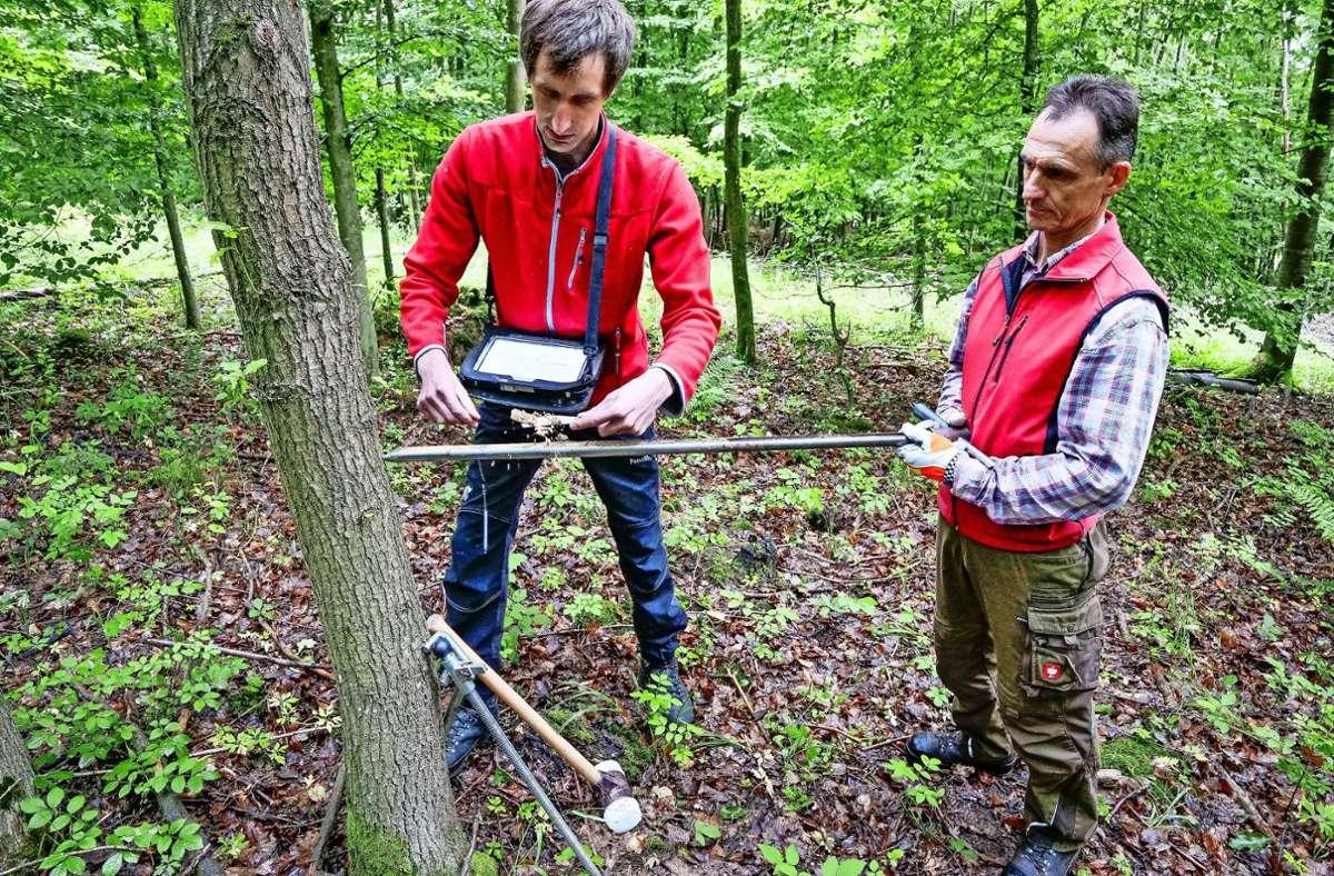 Sebastian Peters (links) und Werner Leeger analysieren  Bodenproben im Wald: Das Erdreich im Bohrkern wird unter anderem auf Feuchtigkeit untersucht. Foto: factum/Simon Granville