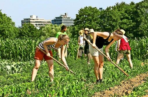 Ein Pakt der Städter mit dem Landwirt