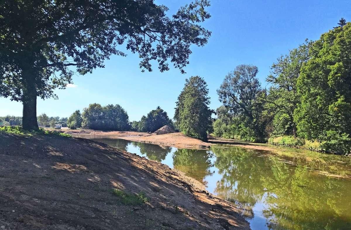 Wo Brigach und Breg die Donau zu Weg bringen, wird ein neues Flussbett ausgebildet. Foto: RP Freiburg