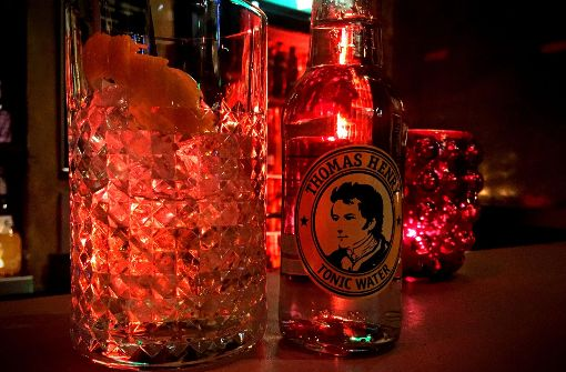 Fruchtiger Gin Tonic in der Minibar