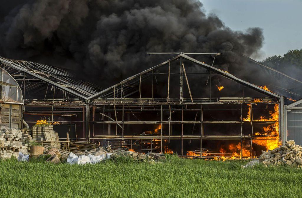 Sechs Gewächshäuser sind komplett abgebrannt. Foto: 7aktuell.de/Simon Adomat