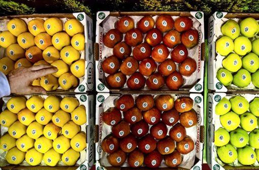 Biolebensmittel boomen in der Pandemie