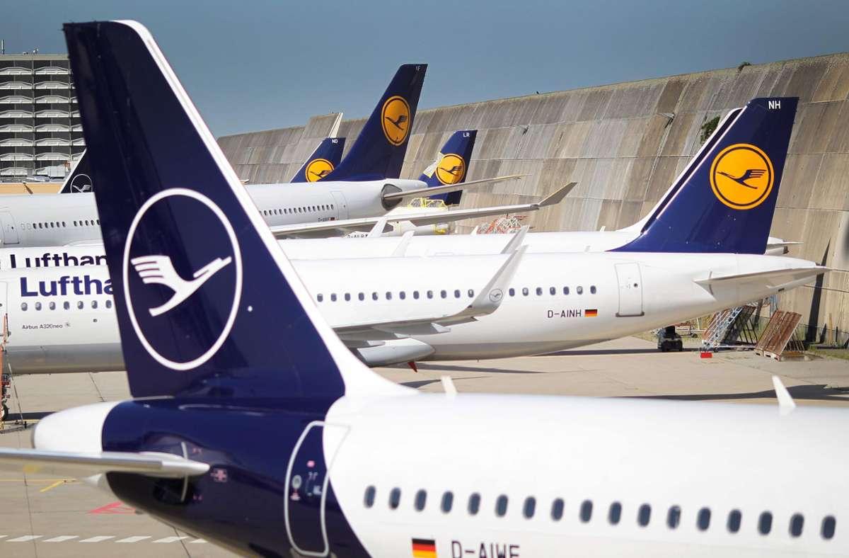 Der Kranich hat Flugprobleme: Der Lufthansa geht es schlecht. Foto: AFP/DANIEL ROLAND