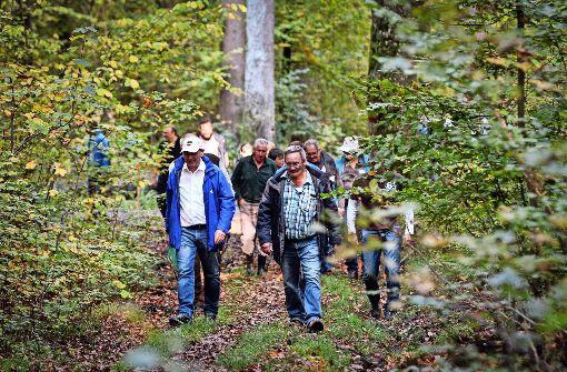 Artenschutz im Bannwald