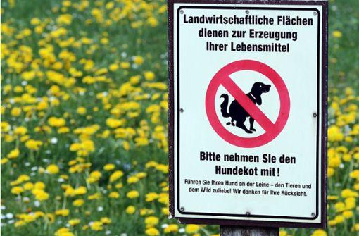 Streit um pinkelnden Hund eskaliert