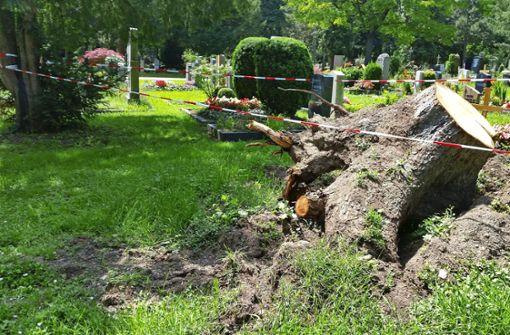 Pragfriedhof für Besucher gesperrt