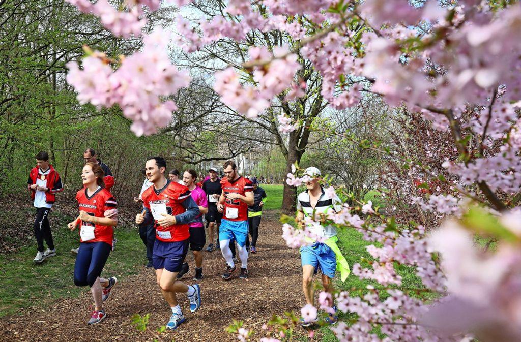 Die Bäume blühen im Frühling, und mancher hat am Morgen bei nur sechs Grad schon die kurzen Hosen an. Foto: factum/Granville
