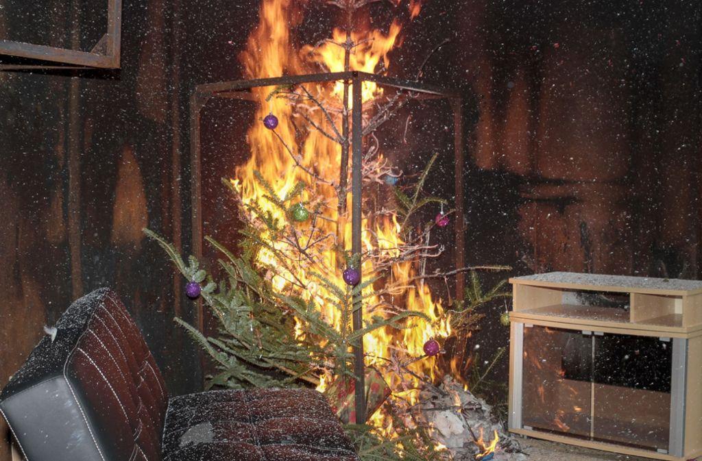 Wie schnell brennt ein Weihnachtsbaum? Eine Test-Vorführung durch die Feuerwehr zeigt: sehr schnell. Foto: factum/Jürgen Bach