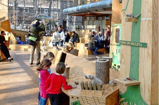 Haus des Waldes lockt 50.000 Besucher an