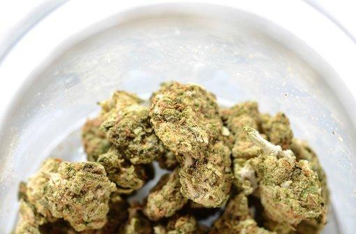 Wem gehört das Marihuana?
