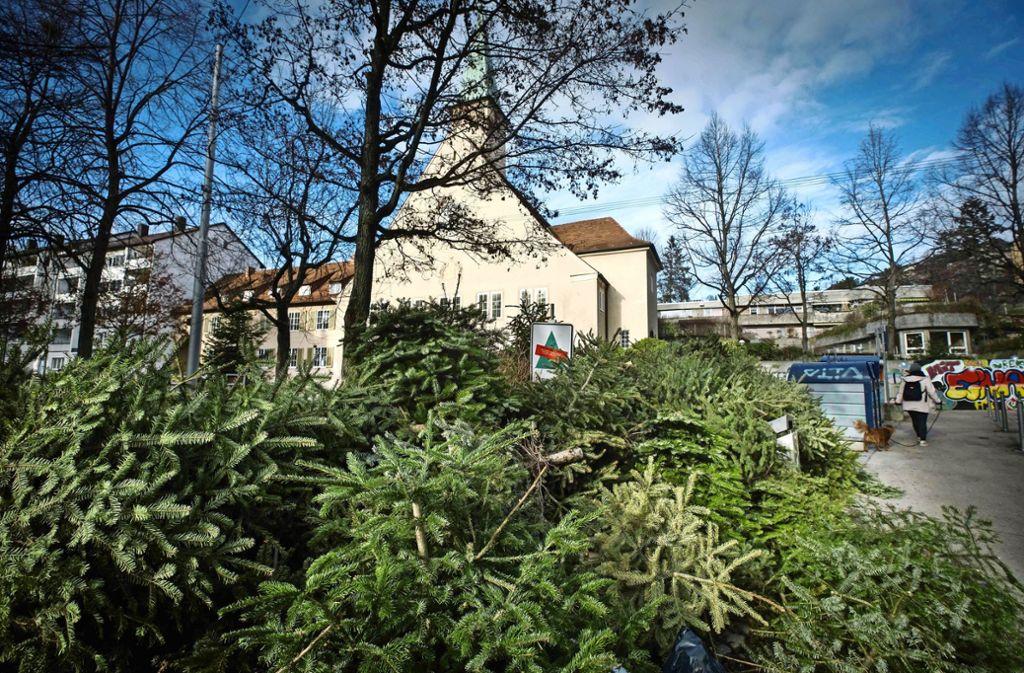 Die Sammelstelle im Stuttgarter Westen am Paul-Gerhardt-Platz Foto: Lichtgut/Achim Zweygarth