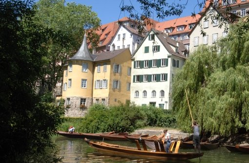 Tübingen am Neckar: als erste Stadt im Land mit einer Piratenfraktion Foto: dpa