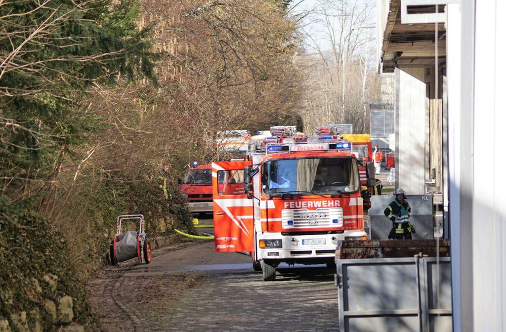 Die Werksfeuerwehr der Papierfabrik wurde von der Feuerwehr Lenningen unterstützt. Foto: SDMG