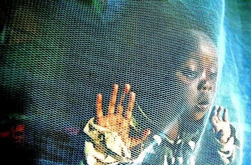 Der Kampf gegen die Stechmücken