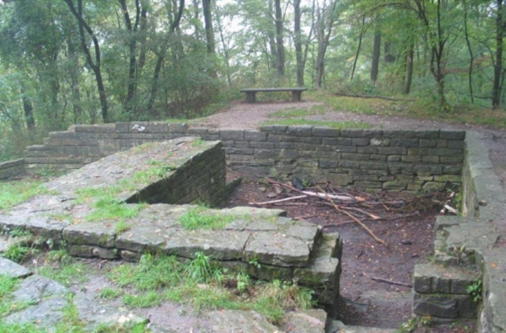 Die Ruine der Burg Dischingen ist laut SPD in einem schlechten Zustand. Foto: S. Müller-Baji