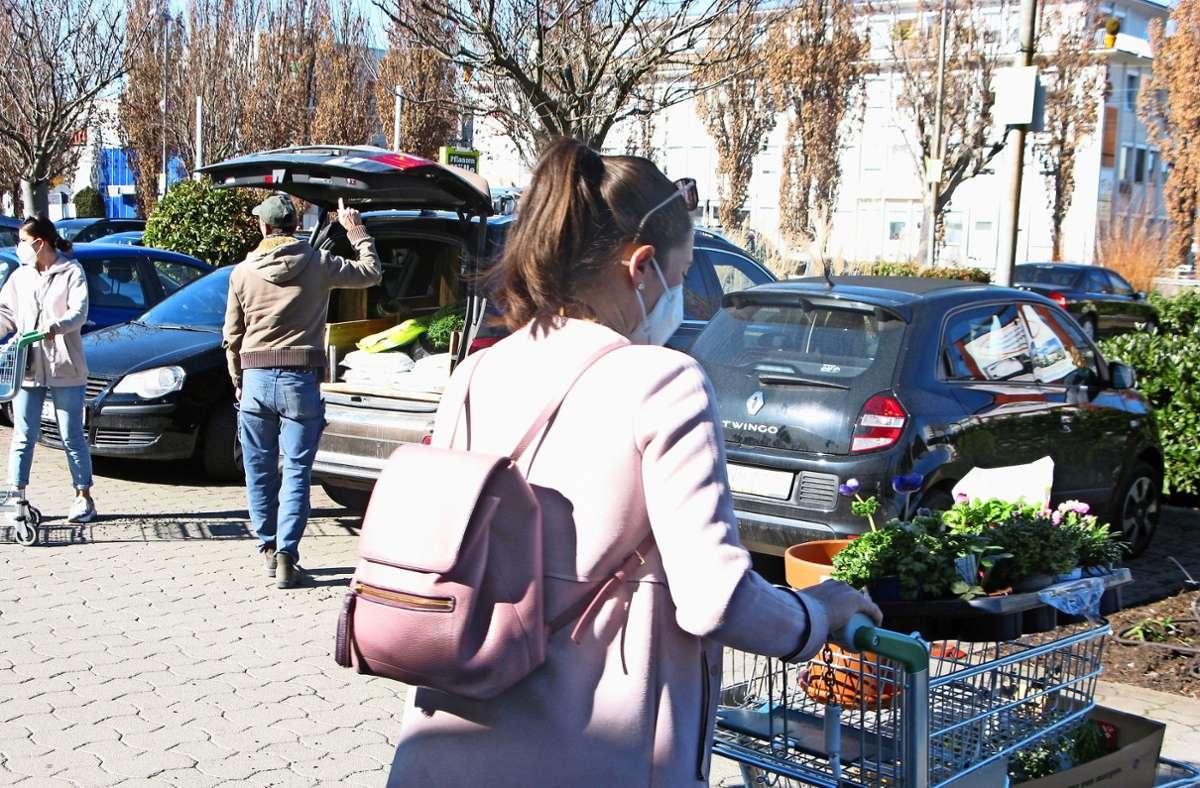 Bei Pflanzen Kölle  in Fellbach muss jeder Kunde einen Wagen nutzen. Foto: Eva Schäfer