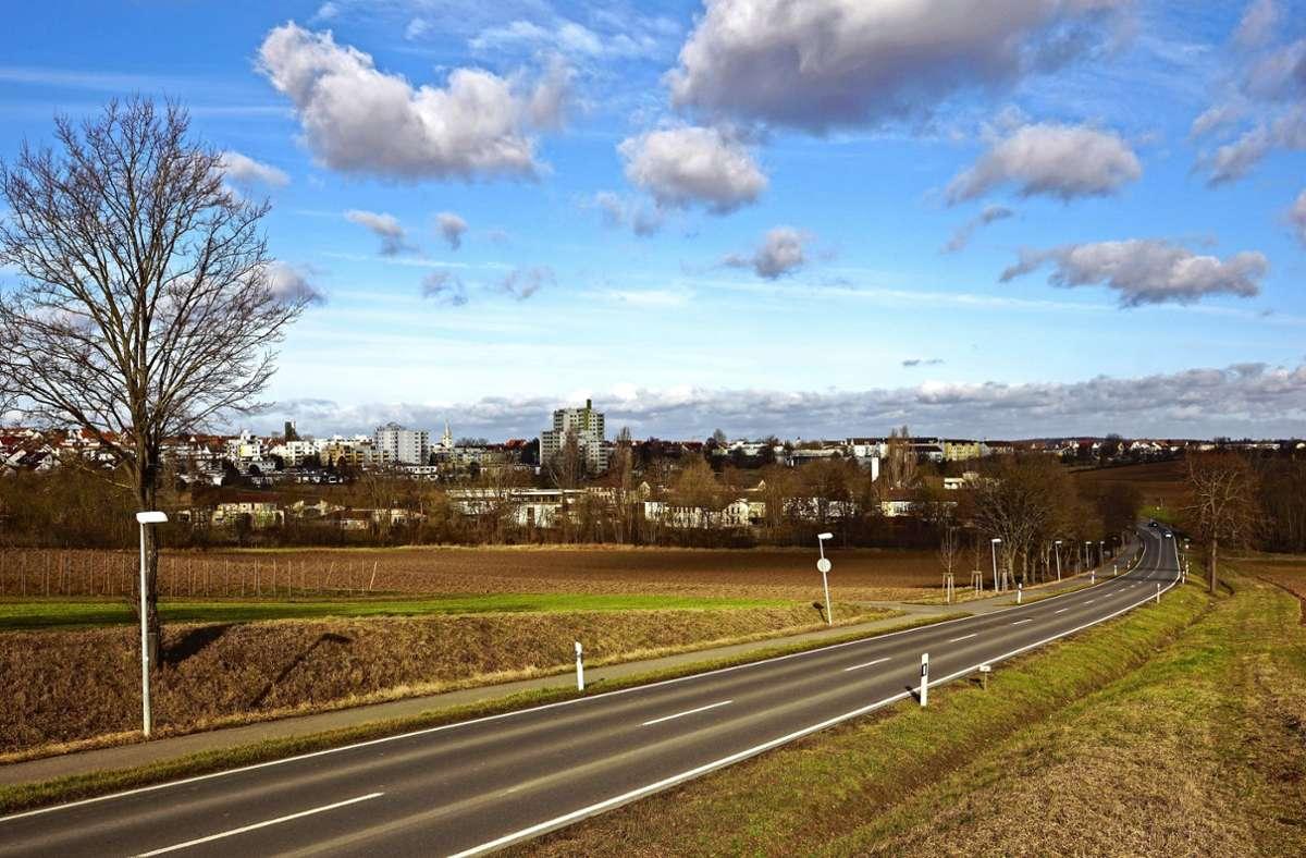 Die Pläne für das Hangweidenareal in der Senke zwischen Stetten und Rommelshausen werden virtuell vorgestellt. Foto: