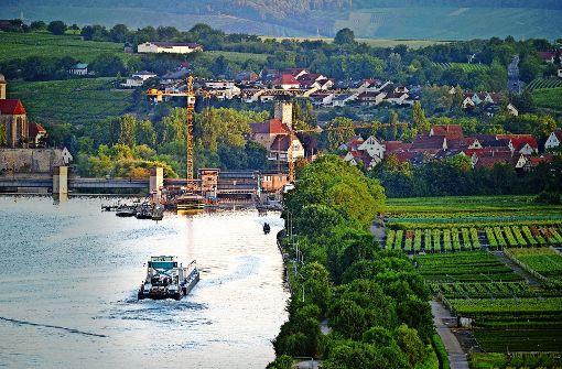 Der Neckar als Straße für Castoren