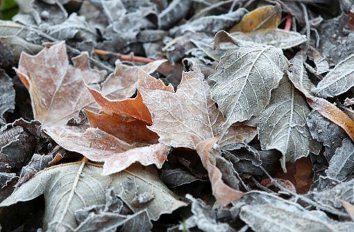 Herbstlich kühl und wechselhaft –  Schneefallgrenze sinkt