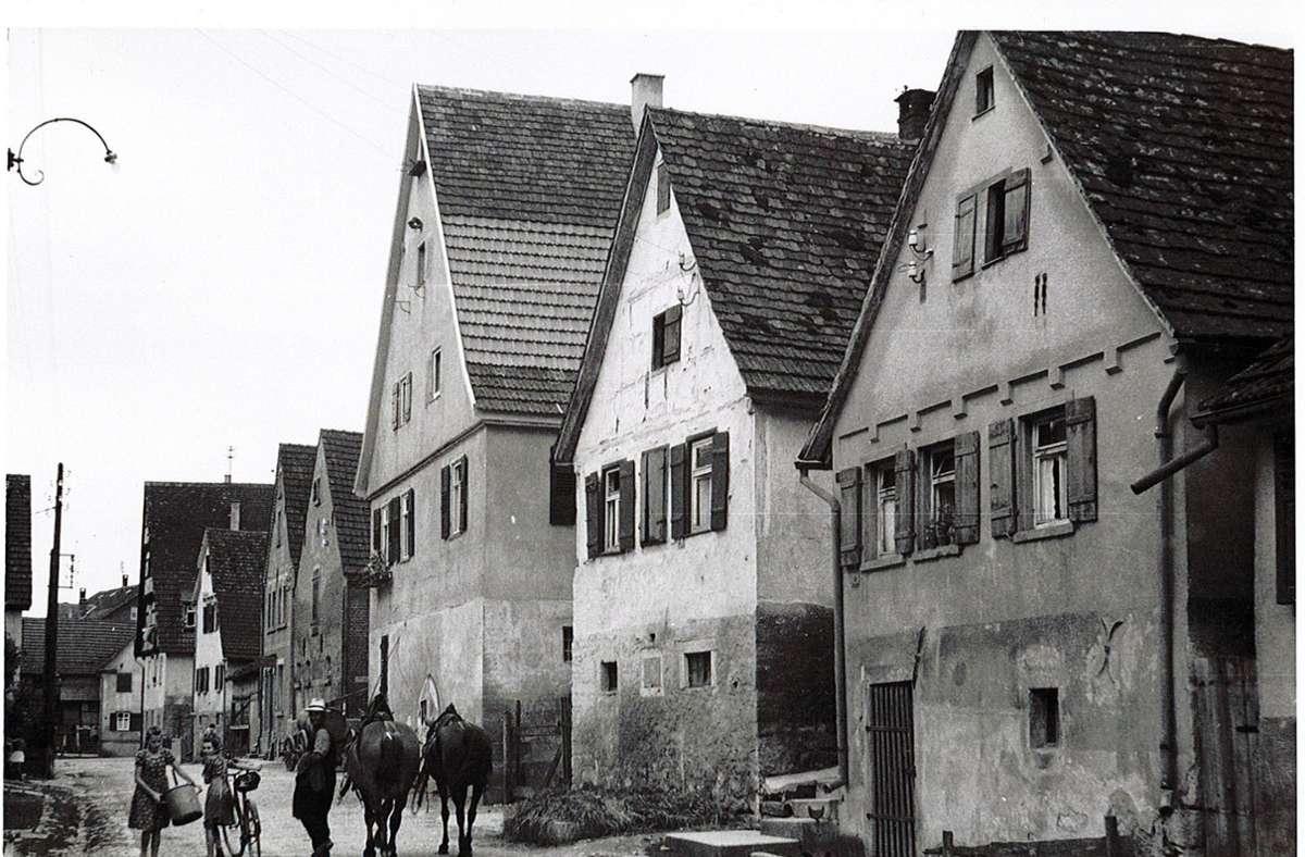 Viehweg in Neckargröningen Foto: Stadtarchiv Remseck am Neckar