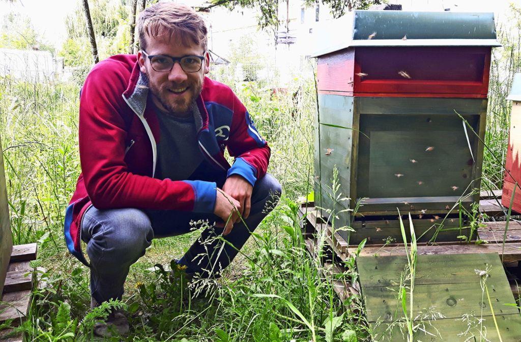 Der Bienenstock ist  repariert. Schmid ist froh, dass das Volk  überlebt hat. Foto: Eva Funke