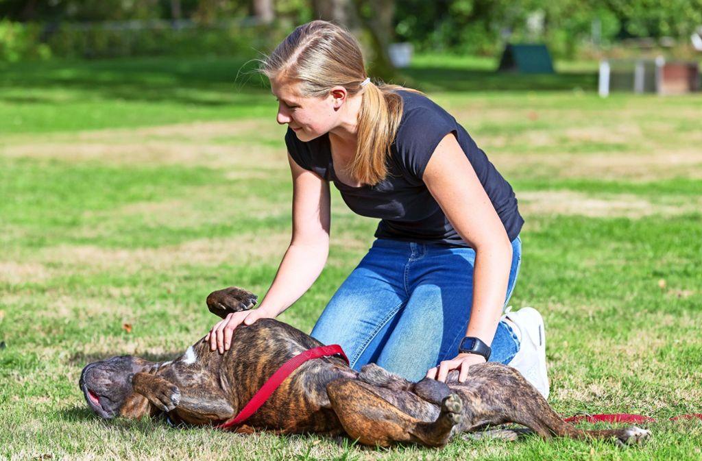 Sabrina Hägele nimmt mit ihrem Hund Lennox an dem Erste-Hilfe-Kurs teil. Sie will unter anderem wissen, was sie tun soll, wenn ihr Pferd auf die Hundepfote tritt. Foto: Thomas Krämer