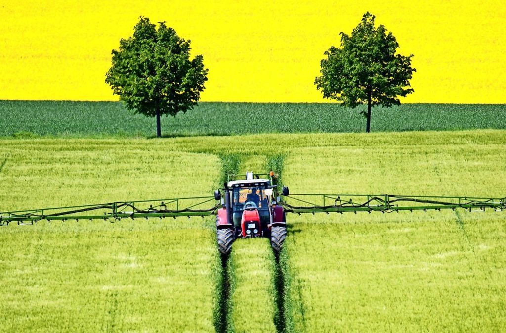Es tobt ein Streit um Felder auf den Fildern. Foto: dpa