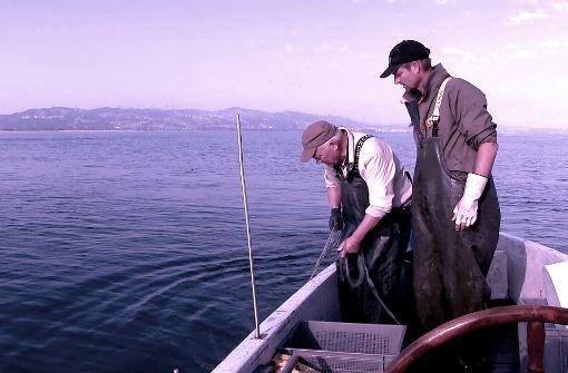 Ausgefischt? Die Fischer vom Bodensee