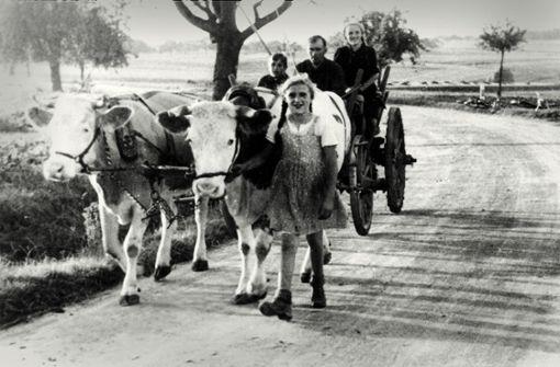 Zeitreise durch die Geschichte des Landkreises