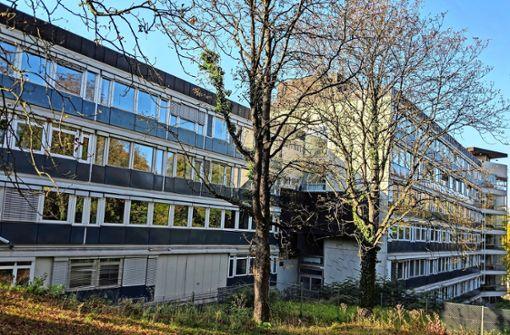 Abriss im Villa-Berg-Park dauert länger