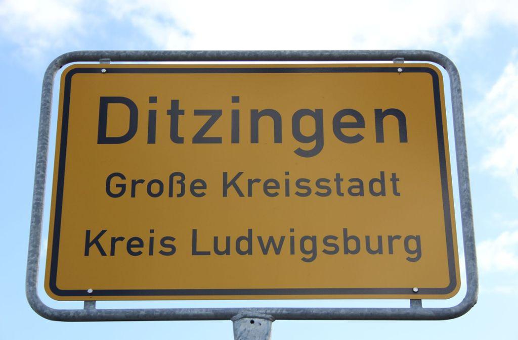 In Ditzingen soll im neuen Jahr über die Vereinsförderung diskutiert werden. Foto: Pascal Thiel
