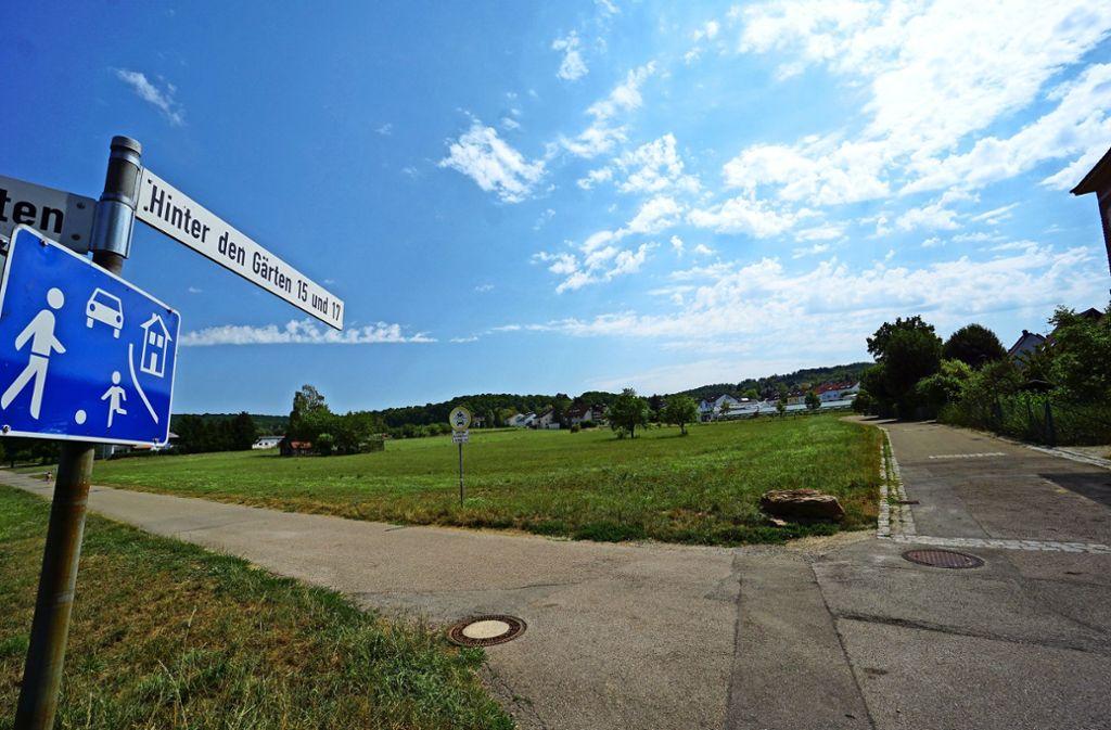 Seit Jahren gibt es ein Tauziehen um den Grünstreifen hinter der Ortsmitte Warmbronn. Ob es jetzt mit dem Wohngebiet und der Seniorenanlage vorangeht? Foto: Archiv