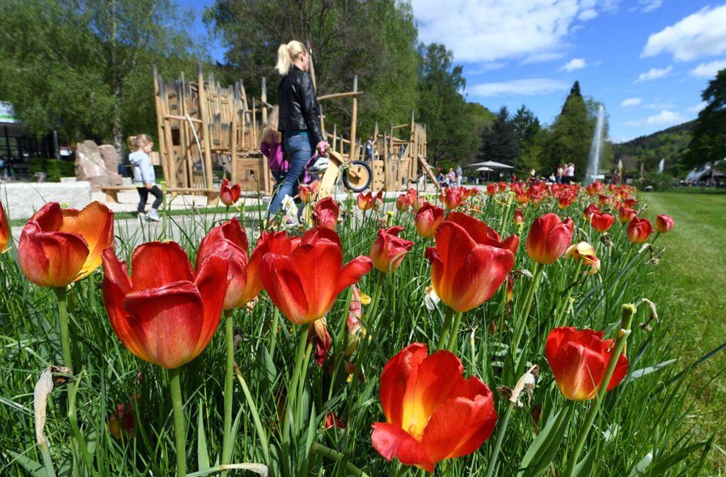 Das lange Maiwochenende bietet eine Fülle an Veranstaltungen in Stuttgart und der Region. Foto: dpa