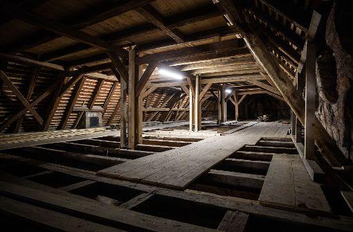 Fledermäuse unterm Kirchendach