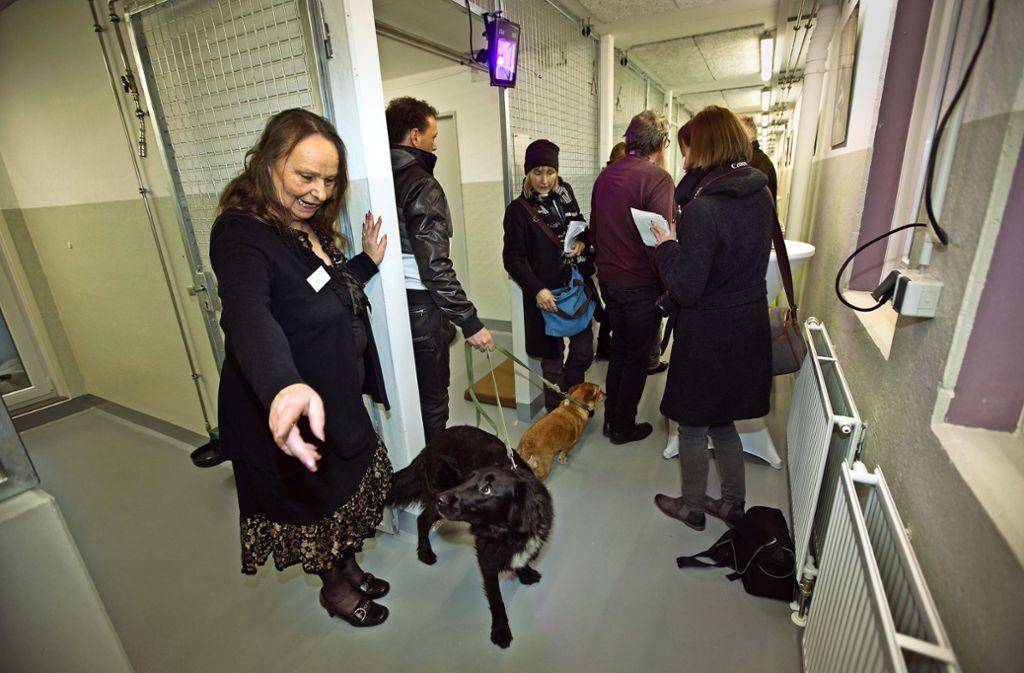 Das Esslinger Tierheim hat im Januar das neue Gebäude eingeweiht. Foto: Ines Rudel