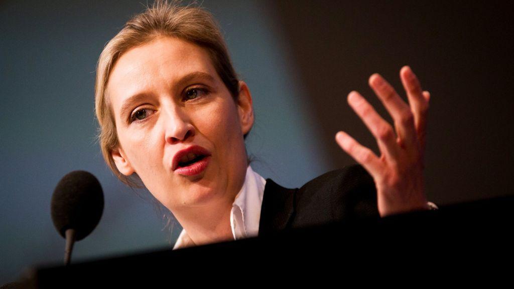 Landesschatzmeister erhebt Vorwürfe gegen Alice Weidel