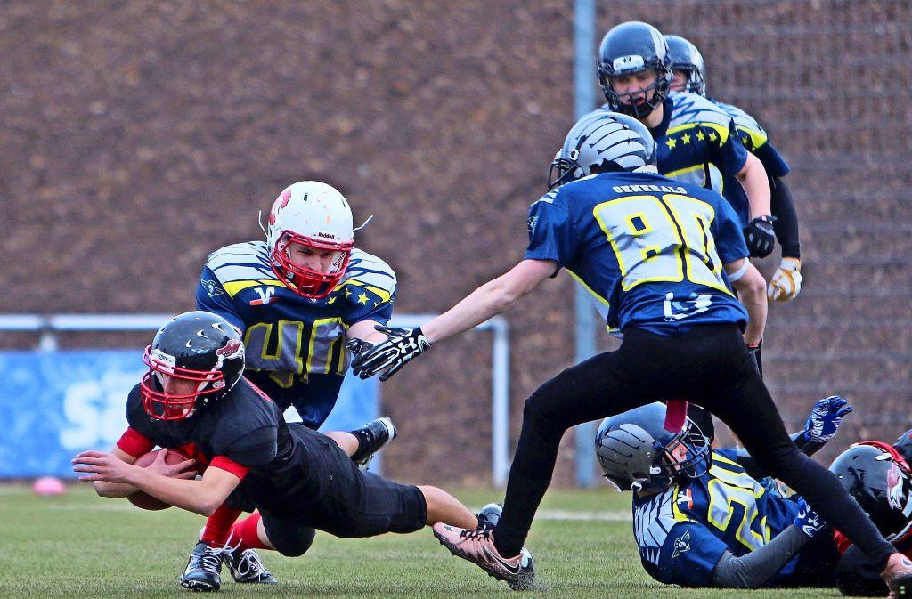 American Football ist ein Sport für harte Jungs. Hier wird ein Angriffsspieler der Leonberg Alligators von der Defense der Pattonville Generals zu Fall gebracht. Foto: Andreas Gorr