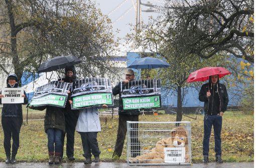 Wildtierverbot: Debatte geht weiter