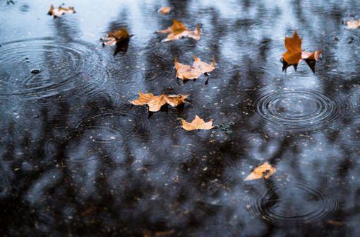 Durch Regen und Tauwetter drohen Hochwasser