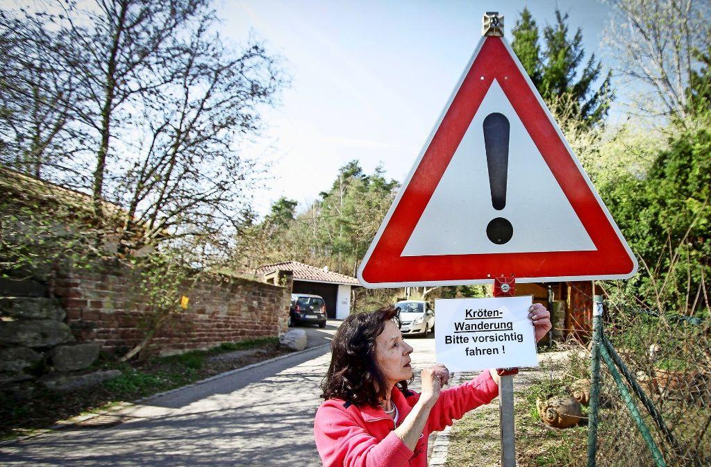 Die Anwohnerin Anita Wagner    hängt Schilder auf, um die Autofahrer für die kleinen Tiere zu sensibilisieren Foto: factum/Bach