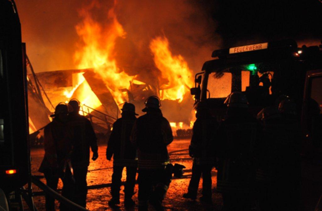 Bei einem Großbrand auf einer Kamelfarm in Rotfelden kommen 86 Kamele um. Fünf Tiere, die nicht im Stall untergebracht waren, überleben das Feuer. Die Ursache des Brande ist unklar. Der Schaden wird auf ein bis zwei Millionen Euro geschätzt. Foto: Sebastian Bernklau