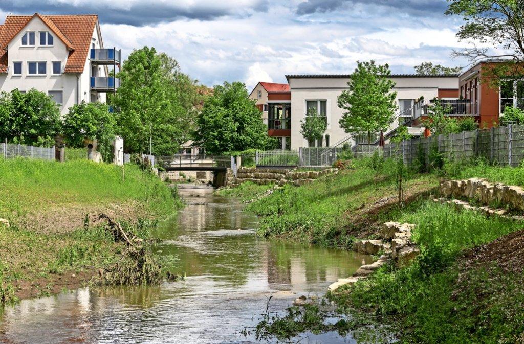 Die Renaturierung des Rankbachs ist eines der großen Ausgleichsprojekte für das Neubaugebiet Schnallenäcker. Foto: factum/Archiv