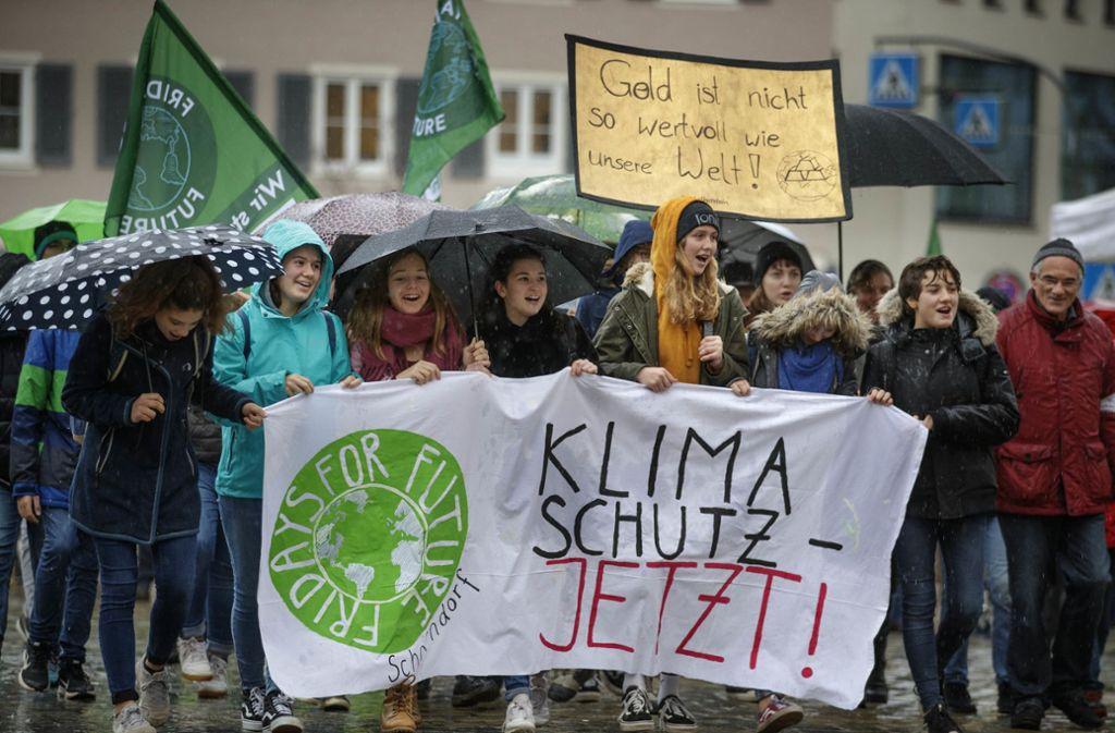 Auch im Rems-Murr-Kreis setzen sich Menschen für Klimaschutz ein. Foto: Stoppel