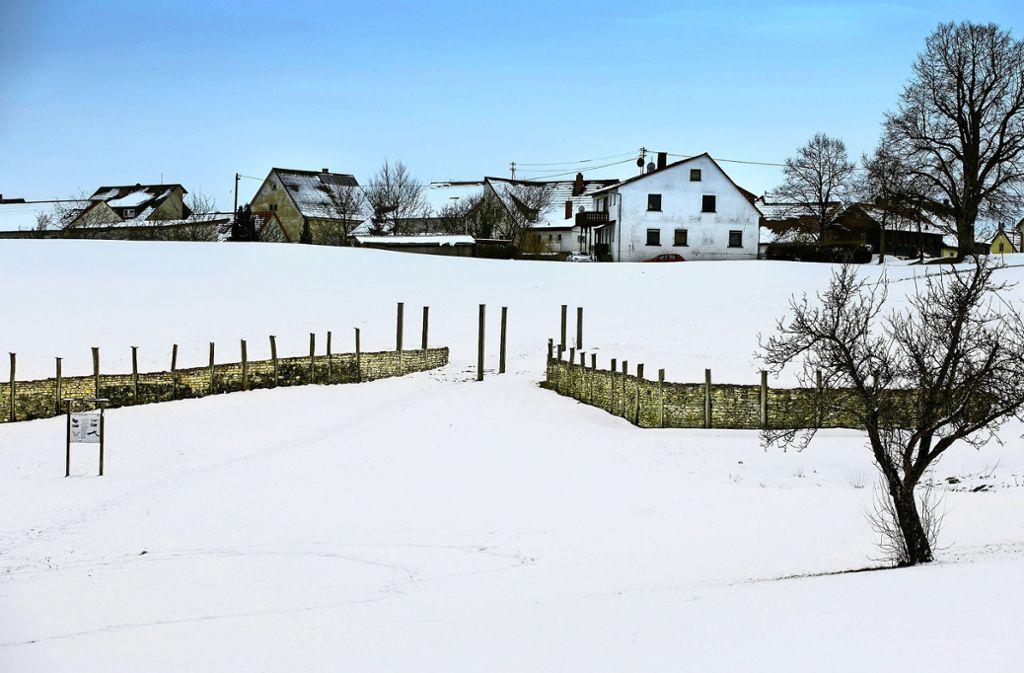 Bisher ist das rekonstruierte Zangentor bei Erkenbrechtsweiler der sichtbarste Beleg der Keltensiedlung. Das soll sich ändern. Foto: Horst Rudel