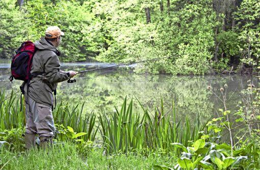 Kann Naturschutz Fischsterben begünstigen?