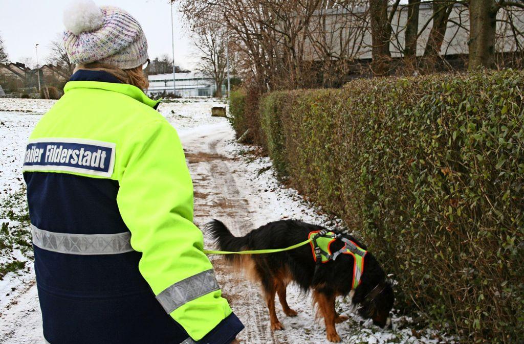 Hund Jani sucht nach der Versteckperson,  Frauchen Uschi Wohlfahrt versucht, mit ihm Schritt zu halten. Foto: Eileen Breuer