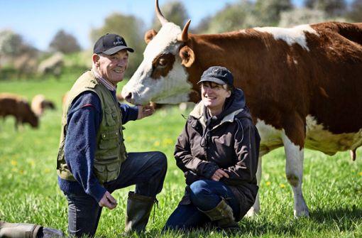 Revoluzzer für Rinder